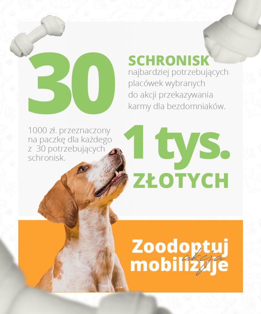 Zoodoptuj Mobilizuje